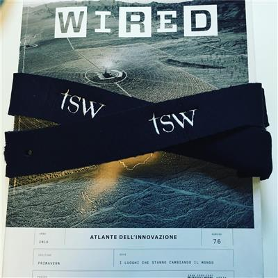 Alumni al Wired Next Festival 2016 con TSW